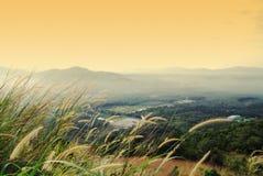Collina di Broga Immagine Stock