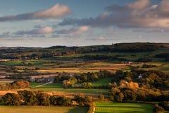 Collina di Knowle, Dorset, Regno Unito Fotografia Stock Libera da Diritti