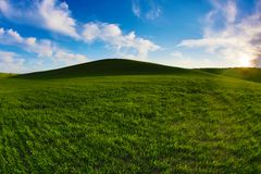 Collina di rotolamento coperta in erba verde intenso Immagine Stock