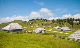 Collina di Velika Planina, Slovenia Fotografia Stock Libera da Diritti