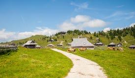 Collina di Velika Planina, Slovenia Fotografie Stock Libere da Diritti
