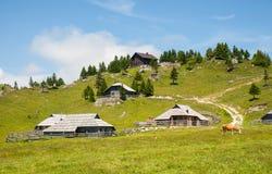 Collina di Velika Planina, Slovenia Fotografia Stock