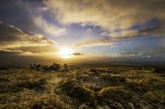 Collina dorata di Caradon di alba, Cornovaglia, Regno Unito Fotografie Stock