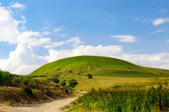 Collina e cielo blu dell'erba verde Immagine Stock