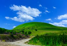 Collina e cielo blu dell'erba verde Fotografie Stock Libere da Diritti