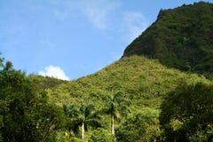 Collina in Kauai Fotografia Stock Libera da Diritti