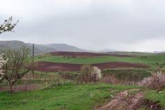 Collina marrone verde Montagne con le nuvole nella primavera Natura ?Tekeli ? Montagne di Alatau kazakhstan immagine stock
