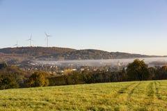 Collina rurale w della foresta del campo di erba degli alberi di mattina della foschia della nebbia del paesaggio immagine stock