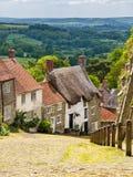 Collina Shaftesbury Dorset dell'oro Immagini Stock
