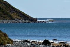 Collina soleggiata della spiaggia con un surfista che pratica il surfing un'onda Immagine Stock Libera da Diritti