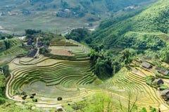 Collina a terrazze del giacimento del riso dell'azienda agricola di agricoltura del villaggio Fotografia Stock Libera da Diritti