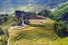 Collina a terrazze del giacimento del riso di agricoltura del villaggio Fotografia Stock Libera da Diritti