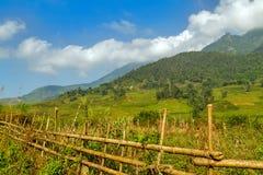 Collina a terrazze del giacimento del riso di agricoltura del villaggio Immagine Stock Libera da Diritti