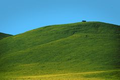 Collina verde Immagine Stock