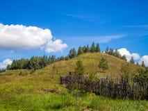 Collina verde Fotografia Stock