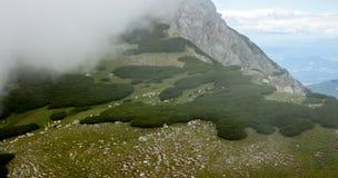 Collina verde della montagna Immagine Stock Libera da Diritti