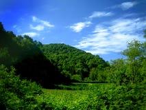 Collina verde e cielo Immagini Stock