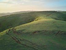 Collina verde sulla luce di alba Fotografie Stock Libere da Diritti