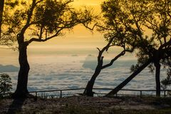Colline aumentate a partire dalla mattina di alba della nebbia bella Fotografie Stock