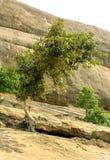 Colline avec le paysage de ciel du complexe sittanavasal de temple de caverne Photo stock