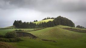 Colline avec le sao Miguel Portugal des Açores de vue de nature d'arbres Photographie stock libre de droits
