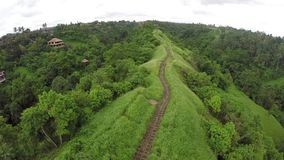 Colline campuhan di Bali situate nel ubud stock footage