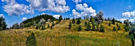 Colline coperte in foreste. Fotografia Stock Libera da Diritti