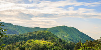 Colline d'herbe verte de montagne Photographie stock libre de droits
