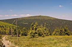 Colline de Praded en montagnes de Jeseniky d'été dans la République Tchèque Photographie stock