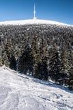 Colline de Praded en montagnes de Jeseniky d'hiver Photographie stock