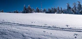 Colline de Praded en montagnes de Jeseniky d'hiver avec le ciel clair Photo stock