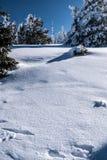 Colline de Praded en montagnes de Jeseniky d'hiver dans la République Tchèque Image stock