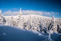 Colline de Praded en montagnes de Jeseniky d'hiver dans la République Tchèque Photographie stock