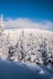 Colline de Praded en montagnes de Jeseniky d'hiver dans la République Tchèque pendant l'hiver Photos stock