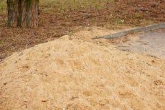 Colline de sable Photos stock