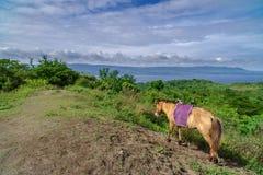 Colline de volcan de Taal Photographie stock