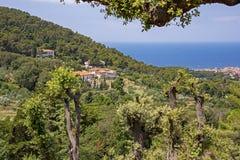 Colline de vue d'océan en Toscane Image stock