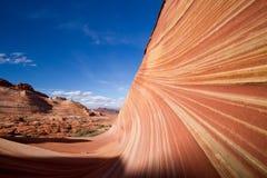 Colline del coyote - Wave Fotografie Stock Libere da Diritti