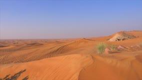 Colline del paesaggio del deserto alte sulle dune sabbiose Dune giallo sabbia in deserto selvaggio caldo video d archivio