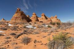 Colline del sud del coyote, monumento nazionale delle scogliere del vermiglio Fotografia Stock