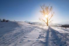 Colline della montagna di inverno Immagine Stock Libera da Diritti