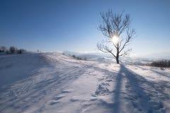 Colline della montagna di inverno al giorno soleggiato Immagine Stock