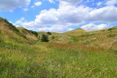 Colline della steppa Fotografie Stock Libere da Diritti