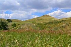 Colline della steppa Immagine Stock