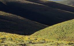 Colline della terra asciutta in primavera Immagini Stock