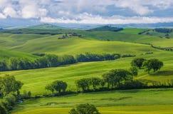 Colline della Toscana Fotografia Stock