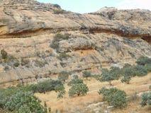 Colline della valle Immagine Stock
