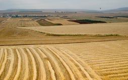 Colline della valle e di Issachar di Yezreel Fotografia Stock
