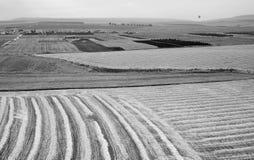Colline della valle e di Issachar di Yezreel Fotografie Stock Libere da Diritti