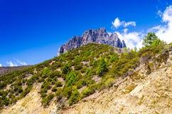 Colline des montagnes Photos libres de droits